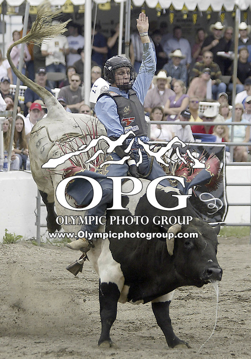 29 August 2004: Bull RiderJarrod Ford 18th ranked in the world rides the bull Spin Drift during the PRCA 2004 Extreme Bulls competition in Bremerton, WA.
