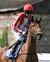 Nassya ridden by Robert Havlin goes down to the start of The Smith & Williamson Fillies' Novice Stakes (Class 5 during Afternoon Racing at Salisbury Racecourse on 17th May 2018