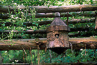 Toad sits in a birdhouse high up on a garden arbor looking out  from the opening