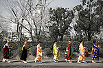 During the Hana Matsuri (Flower Festival) celebrating Buddha's birthday, monks parade in a single file line at the Nagoyama Cemetary