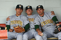 Lynchburg Hillcats shortstop Daniel Castro (12),  outfielder Kyle Wren (2), and second baseman Jose Peraza (1) in the dugout before a game against the Potomac Nationals on April 26, 2014 at Pfitzner Stadium in Woodbridge, Virginia.  Potomac defeated Lynchburg 6-2.  (Mike Janes/Four Seam Images)
