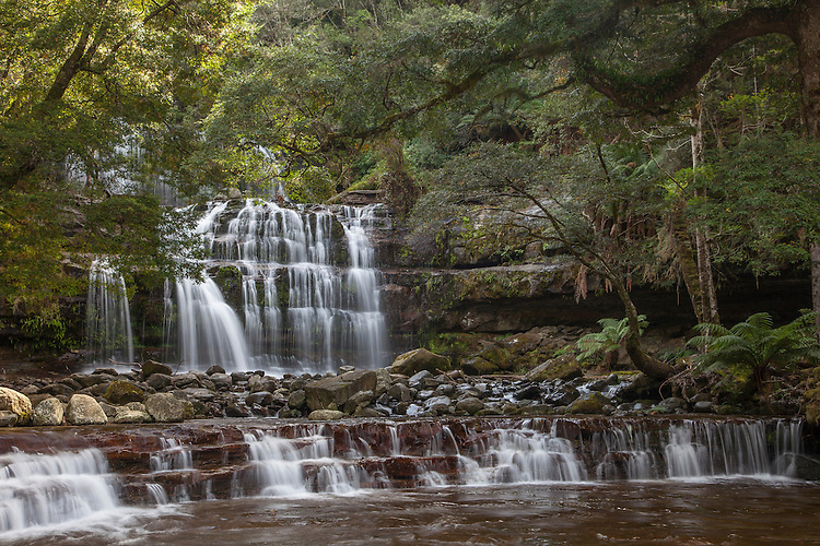 Fed by rainfall in the Great Western Tiers, Liffy River forms four separate cascades in the Liffy Falls State Reserve