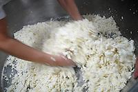 Un caseificio per la produzione di mozzarella di bufala. Hoax mozzarella production.