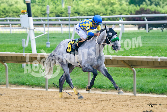 Keep It Pithy winning at Delaware Park on 8/4/16