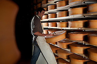 David Patton, director, tests Beaufort cheeses ageing in the cellar of the regional cheese co-operative and Beaufort cheese-making facility, Lancelebourg, Savoie, France, 17 February 2012.