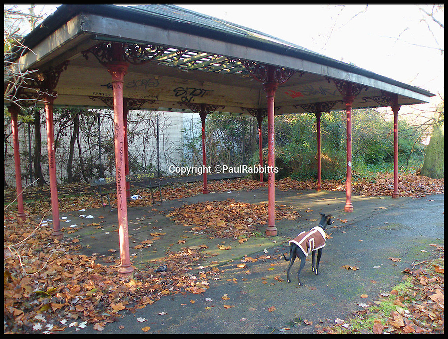 BNPS.co.uk (01202 558833)<br /> Pic: PaulRabbitts/BNPS<br /> <br /> ***Please Use Full Byline***<br /> <br /> The bandstand at Sparke Evans Park, Bristol still stands today. <br /> <br /> A landscape gardener is trumpeting the great British creation of the bandstand after touring the country's parks to study the iconic structures for a new book.<br /> <br /> Paul Rabbitts' work is a celebration of the Victorian platforms and a throwback to the halycon days of outdoor music when thousands of people would gather in public parks for a brass band performance.