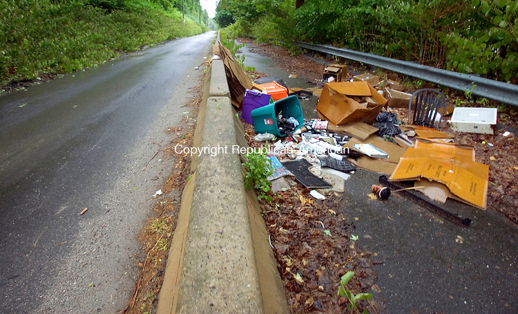 WATERBURY CT. 01 June 2015-060115SV03-Trash is piling up on the untraveled portion of Waterville Street in Waterbury Monday. Waterville Street is a one-way road created by Hychko Co. and has become a dump zone. <br /> Steven Valenti Republican-American