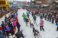 Jessie Royer and team make their way to the start line on 4th avenue in downtown during the Ceremonial Start of the 2016 Iditarod in Anchorage, Alaska.  March 05, 2016
