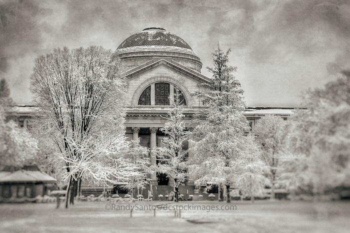 Smithsonian Natural History Musuem Washington DC