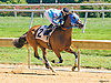 Oh My Dar winning at Delaware Park on 8/22/16