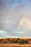 Rainbows over Kgalagadi transfrontier park, South Africa, January 2013