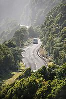 Great Coastal Road near Punakaiki, Paparoa National Park, West Coast,  Buller Region, New Zealand, NZ