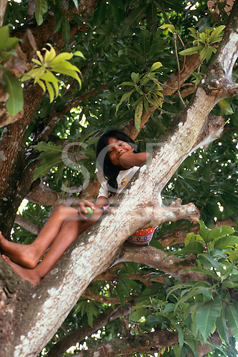 Tataquara, Amazon, Brazil. Kayapo indian girl sitting in a tree.