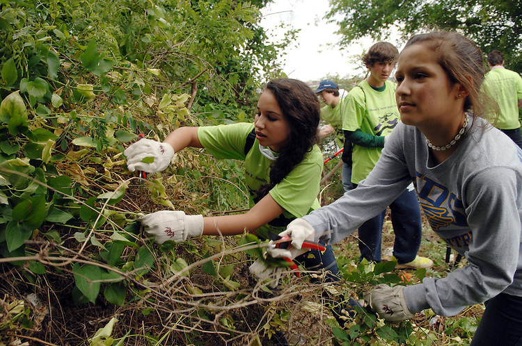 Alexandra Smith, left, and Galit Krifcher, 8th graders from Charles E. Smith Jewish Day School (CESJDS), pull at vines during a clean up effort along the banks of Anacostia River.  Members of the Washington Nationals joined Kimball Elementary School and CESJDS students and the Earth Conservation Corps, for the effort.