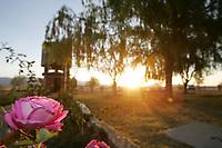 Al Amanecer<br />La vegetaci—n y el Rancho los Fresnos se ti–e de dorado mezclandose con los colores de la naturaleza.<br />.<br />El pasado 13 de Mayo se llevo acabo el festejo del dia mundial de la aves con fines de conservacion a cargo de BDA (Biodiversidad y Desarrollo Arm—nico AC. ) y la Comisi—n Nacional Forestal en el Rancho ¬Los Fresnos¬ ubicado en la franja fronteriza con el estado de Arizona al norte de Cananea.