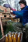 Ollie making apple juice from the Bramleys.   Tinker's Bubble, Low impact community,  Somerset