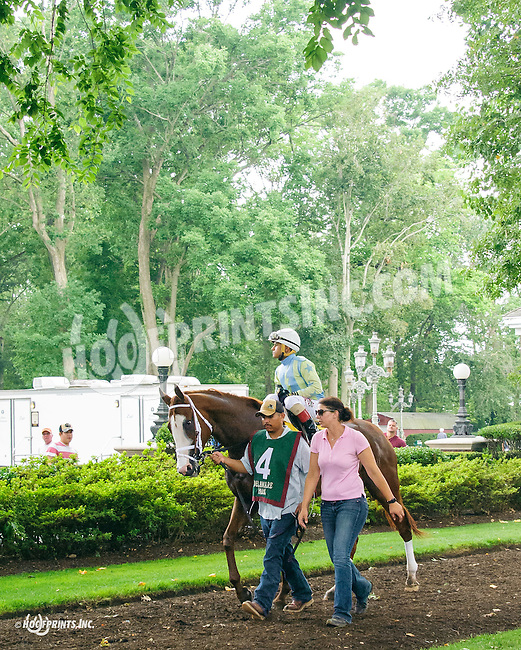 Stormy Sky before The Dashing Beauty Stakes at Delaware Park on 7/9/16