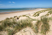 United Kingdom, England, East Sussex, Camber: Camber Sands, beach and sand dunes | Grossbritannien, England, East Sussex, Camber: Camber Sands, Strand und Sandduenen