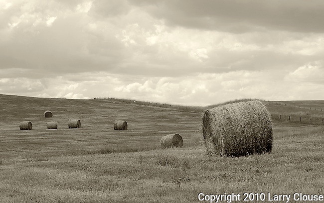 September 2009:  Hay bales across a field near Steamboat Springs, Colorado.