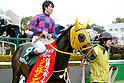 Horse Racing : Nikkan Sports Sho Shinzan Kinen 2017