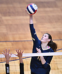 Althof player Nicole Hampton hits the ball over. Althoff lost to Minooka in the championship game of the O'Fallon Class 4A volleyball sectional at O'Fallon HS in O'Fallon, IL on November 6, 2019.<br /> Tim Vizer/Special to STLhighschoolsports.com