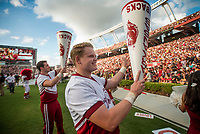 Hawgs Illustrated/BEN GOFF <br /> Arkansas cheerleaders pep the crowd during the game against South Carolina Saturday, Oct. 7, 2017, at Williams-Brice Stadium in Columbia, S.C.