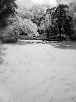 Eden Park