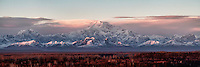 Mt McKinley rises to an early morning alpenglow as viewed from Denali Overlook Lodge, Talkeetna Alaska