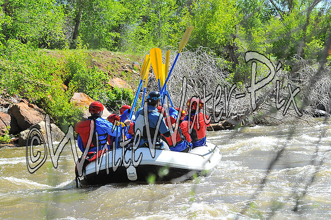 Timberline Tours crashing Interstate, Dead Cow and Rodeo Rapids while running the Lower Eagle River, June 5, 2013, PM, Eagle, Colorado - WhiteWater-Pix | River Adventure Photography - by MADOGRAPHER Doug Mayhew