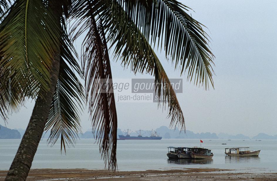 Asie/Vietnam/Baie d'Halong/Ha Long: Bateaux au port de Hon Gai depuis la plage de Bai Chay