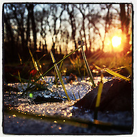 The sun shines on leftover snow at the Blue Bell Hill section of the Wissahickon Valley Park on a cold January 2, 2013.