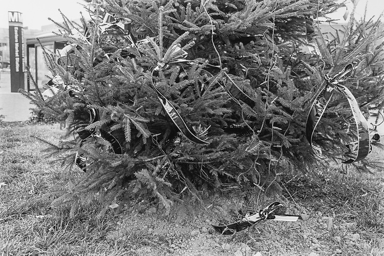 Christmas tree with buried battery at Eastern market metro on Dec. 23, 1993. (Photo by CQ Roll Call via Getty Images)