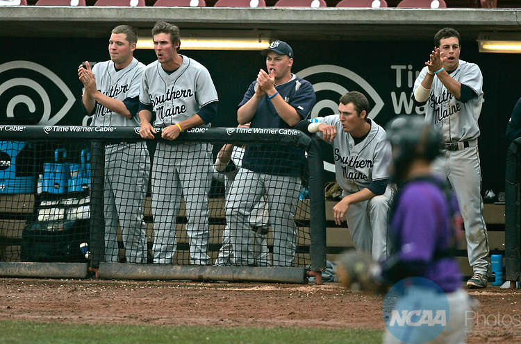 28 MAY 2013: Southern Maine's players cheer from the dugout during the NCAA DIII Baseball Championship at Fox Cities Stadium in Appleton, Wisconsin. Linfield College defeated Southern Maine 4-1 to win the national championship. Allen Fredrickson/NCAA Photos