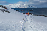 Tourists interacting with Chinstrap penguins on Half Moon Island, South Shetland Islands, Southern Ocean, Antarctica