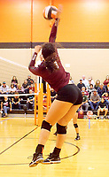 Photo by Randy Moll<br /> Hannah Boss, a Gentry senior, smashes one over the net during the final regular season game against the Lady Lions at Gravette High School on Thursday (Oct. 12, 2017).
