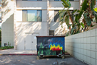 Pauley Hall. One of many dumpsters painted by students as part of the Dumpster Art Project, sponsored by the Office of Sustainability. Photographed June 8, 2018.<br /> (Photo by Marc Campos, Occidental College Photographer)