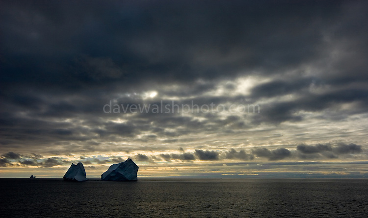 Icebergs, Southern Ocean