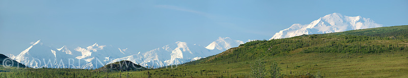 Panorama view of a clear sky over Mt. McKinley and the Alaska Range on a summer morning from a ridge above the Wonder Lake area.  This is a 6 foot long, high-resolution composite image showing great detail of the landscape.
