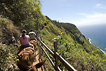 Hawaii: Molokai, the Mule Ride from the cliff tops down 1,600 feet to the leper colony at Kalaupapa..Photo himolo146-72321.Photo copyright Lee Foster, www.fostertravel.com, lee@fostertravel.com, 510-549-2202