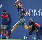 Del Potro defeats Roger Federer