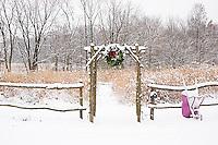 63821-174.09 Rustic fence & arbor with holiday wreath & purple wheelbarrow near prairie in winter, Marion Co. IL
