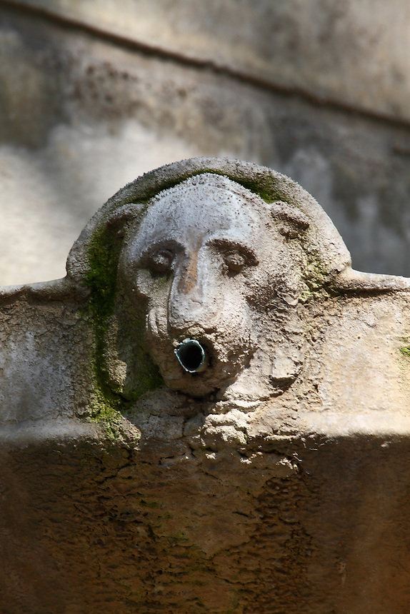 A particular of the fountain in rue Bonaparte in Paris (the fountain of the peace): A small marble lion with its water pipe in the mouth, covered by calcareous crusts. Digitally Improved Photo.