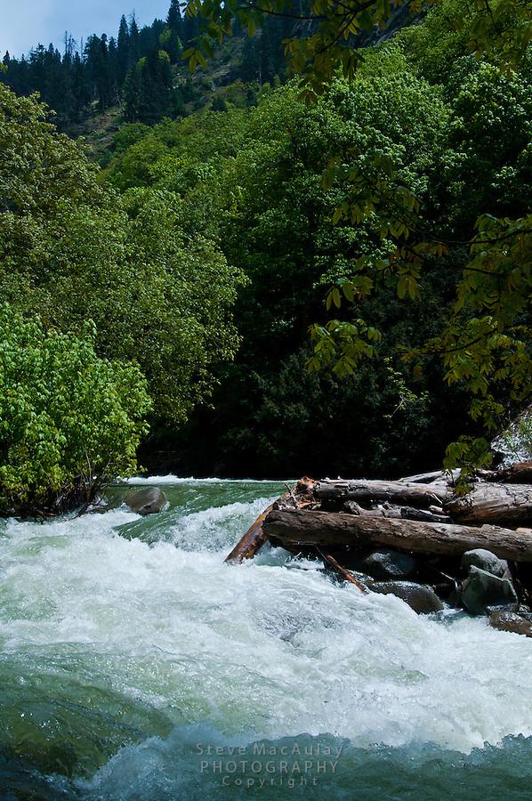 The Kanka River flowing swiftly with Spring snowmelt, Naranag, Gangabal Lake region of Kashmiri Himalayas, India.