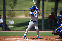 AZL Royals Ricardo Sanchez (9) at bat during an Arizona League game against the AZL Dodgers Lasorda on July 4, 2019 at Camelback Ranch in Glendale, Arizona. The AZL Royals defeated the AZL Dodgers Lasorda 4-1. (Zachary Lucy/Four Seam Images)
