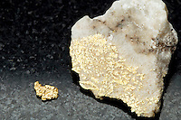 GOLD IN QUARTZ<br /> Gold in Rock Quartz Matrix<br /> (Variations Available)<br /> Elemental gold is usually found either in placer (alluvial) deposits or veins such as in this white quartz matrix.