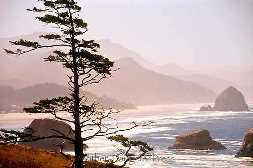 "The landmark ""Haystack rock""  at Cannon Beach in Ecola State Park-- north western Oregon   Pacific coast at sunset. Mountain mist tinged with pink,and a wind swept beach with white surf"