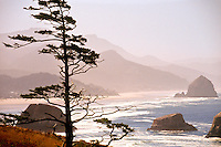 """The landmark """"Haystack rock""""  at Cannon Beach in Ecola State Park-- north western Oregon   Pacific coast at sunset. Mountain mist tinged with pink,and a wind swept beach with white surf"""
