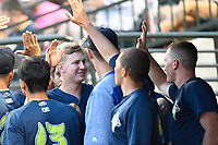 First baseman Dan Rizzie (5) of the Columbia Fireflies is greeted after scoring a run in a game against the Charleston RiverDogs on Monday, August 7, 2017, at Spirit Communications Park in Columbia, South Carolina. Columbia won, 6-4. (Tom Priddy/Four Seam Images)