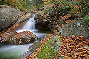 Talford Brook Cascades along Talford Brook during the autumn months in Thornton, New Hampshire.