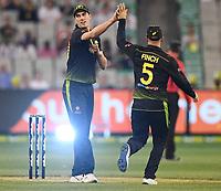 1st November 2019; Melbourne Cricket Ground, Melbourne, Victoria, Australia; International T20 Cricket, Australia versus Sri Lanka; Pat Cummins of Australia celebrates a wicket with Aaron Finch - Editorial Use